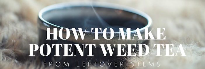 Learn how to make the most of your leftover stems