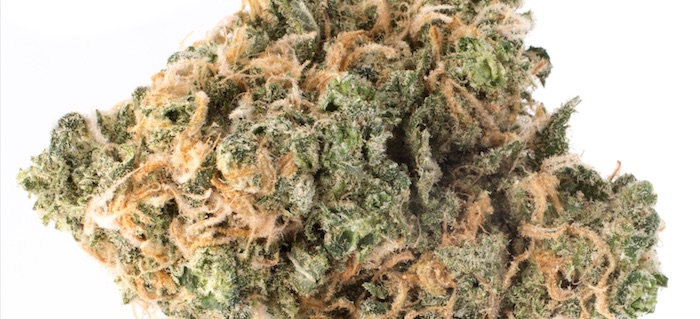 Super Blue Dream Marijuana Strain Review – Medible Review